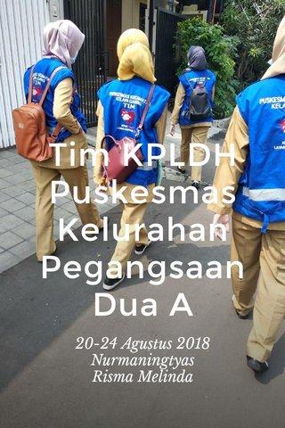 Tim KPLDH Puskesmas Kelurahan Pegangsaan Dua A 20-24 Agustus 2018 Nurmaningtyas Risma Melinda