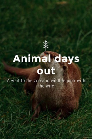 Animal days out A visit to the zoo and wildlife park with the wife