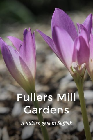 Fullers Mill Gardens A hidden gem in Suffolk