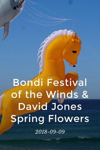 Bondi Festival of the Winds & David Jones Spring Flowers 2018-09-09