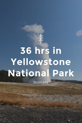 36 hrs in Yellowstone National Park Montana