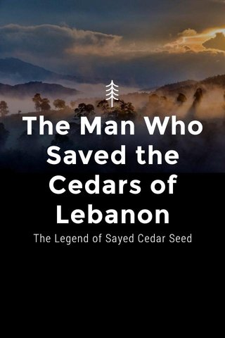 The Man Who Saved the Cedars of Lebanon The Legend of Sayed Cedar Seed