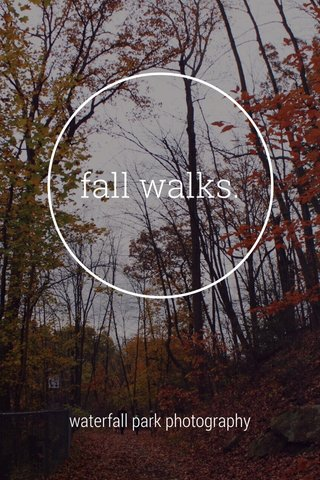fall walks. waterfall park photography