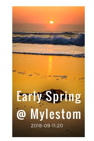 Early Spring @ Mylestom 2018-09-11:20
