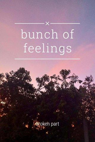 bunch of feelings broken part