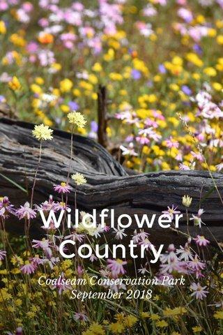 Wildflower Country Coalseam Conservation Park September 2018