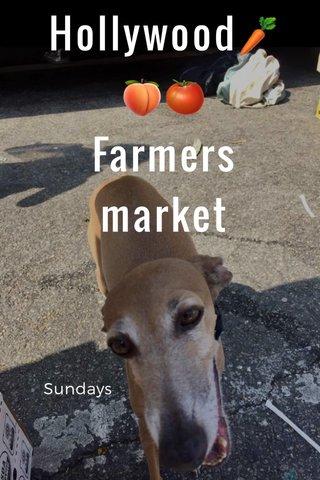 Hollywood🥕🍑🍅 Farmers market Sundays