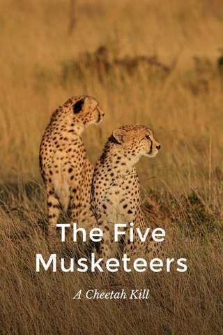 The Five Musketeers A Cheetah Kill