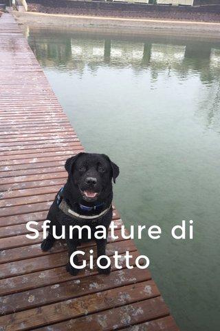 Sfumature di Giotto