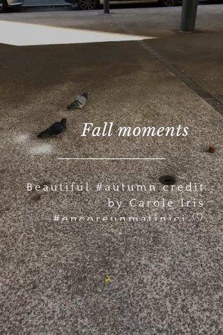 Fall moments Beautiful #autumn credit by Carole Iris #encoreunmatinici ♡