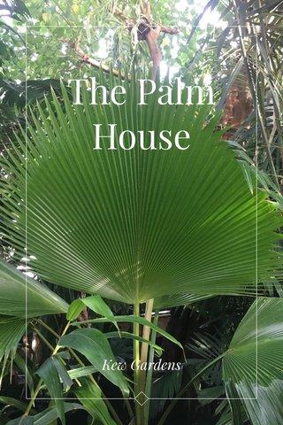 The Palm House Kew Gardens