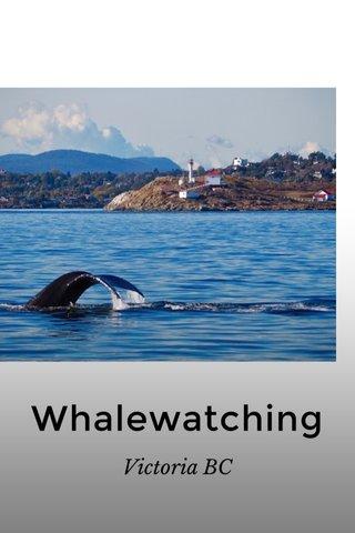 Whalewatching Victoria BC