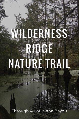 WILDERNESS RIDGE NATURE TRAIL Through A Louisiana Bayou