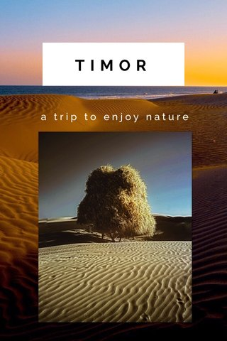 TIMOR a trip to enjoy nature