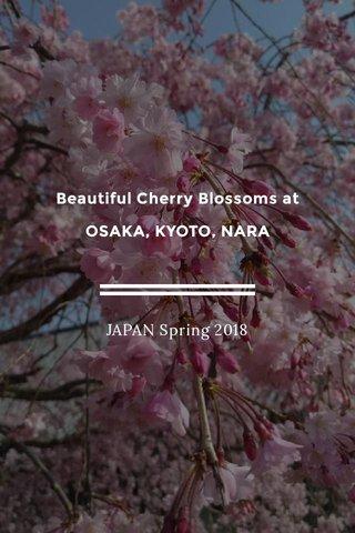 Beautiful Cherry Blossoms at OSAKA, KYOTO, NARA JAPAN Spring 2018