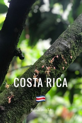 COSTA RICA 🇨🇷 #puravida