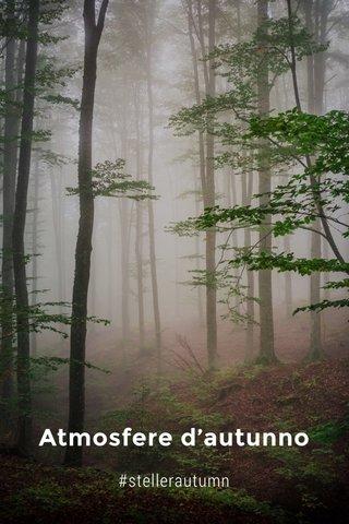 Atmosfere d'autunno #stellerautumn