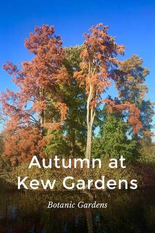 Autumn at Kew Gardens Botanic Gardens