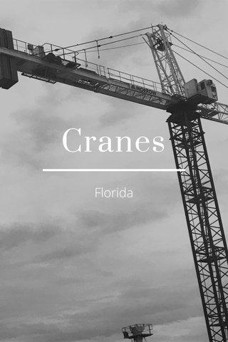 Cranes Florida