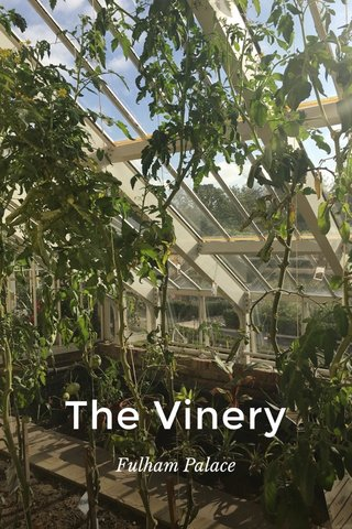 The Vinery Fulham Palace