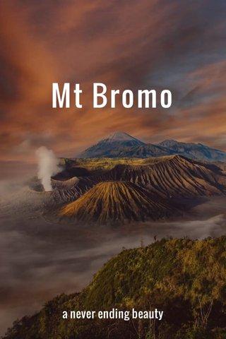 Mt Bromo a never ending beauty