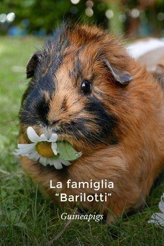 """La famiglia """"Barilotti"""" Guineapigs"""