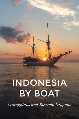 INDONESIA BY BOAT Orangutans and Komodo Dragons