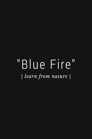 """""""Blue Fire"""" 
