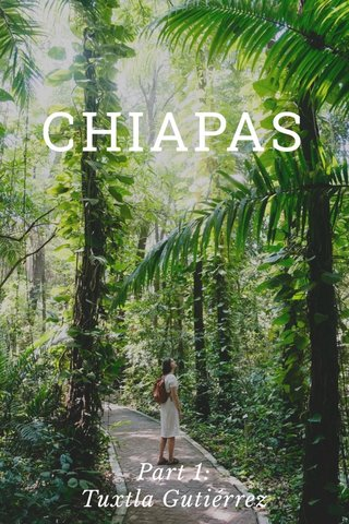 CHIAPAS Part 1: Tuxtla Gutiérrez