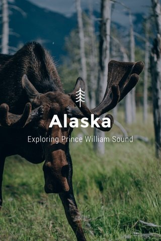 Alaska Exploring Prince William Sound