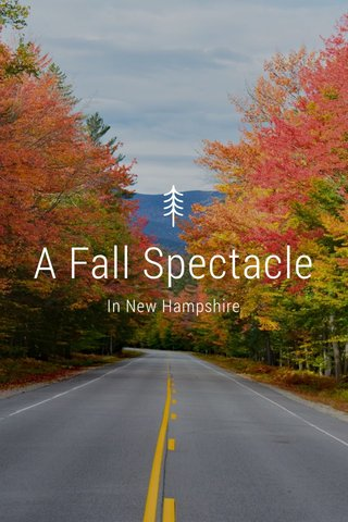 A Fall Spectacle In New Hampshire