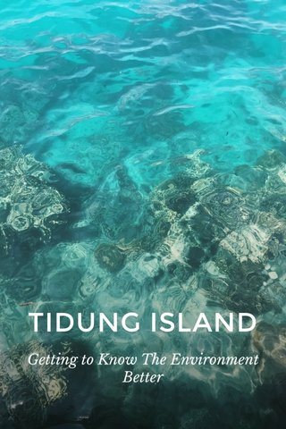 TIDUNG ISLAND Getting to Know The Environment Better