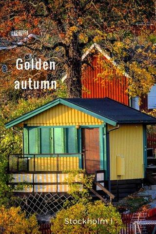 Golden autumn Stockholm I