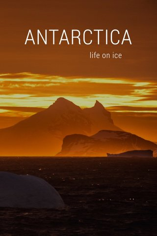 ANTARCTICA life on ice