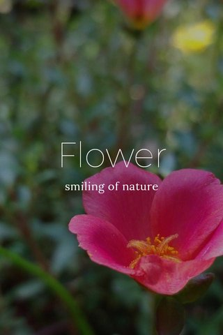 Flower smiling of nature