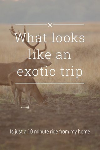 What looks like an exotic trip Is just a 10 minute ride from my home