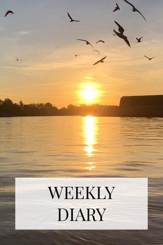 WEEKLY DIARY
