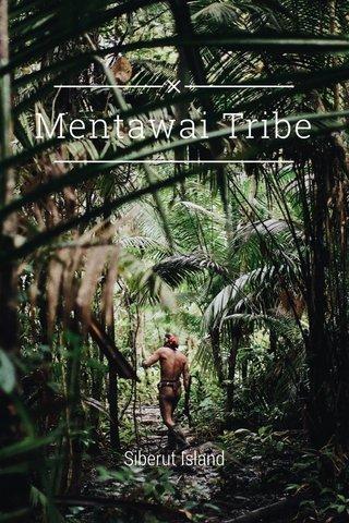 Mentawai Tribe Siberut Island