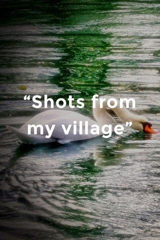 """""""Shots from my village"""""""