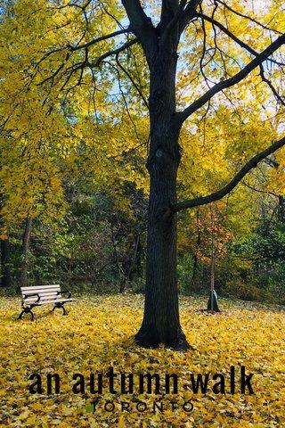 an autumn walk TORONTO