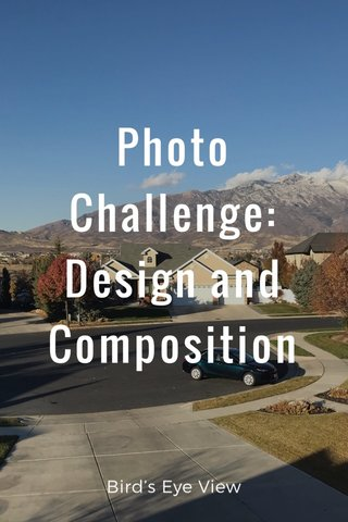 Photo Challenge: Design and Composition Bird's Eye View