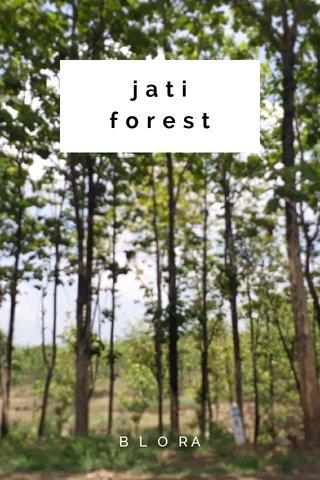 jati forest B L O RA