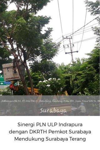 Sinergi PLN ULP Indrapura dengan DKRTH Pemkot Surabaya Mendukung Surabaya Terang