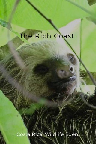 The Rich Coast. Costa Rica, Wildlife Eden.