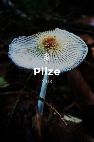 Pilze 2018