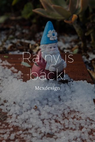 Rainy is back! Mcxdesign