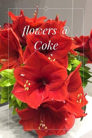 flowers @ Coke