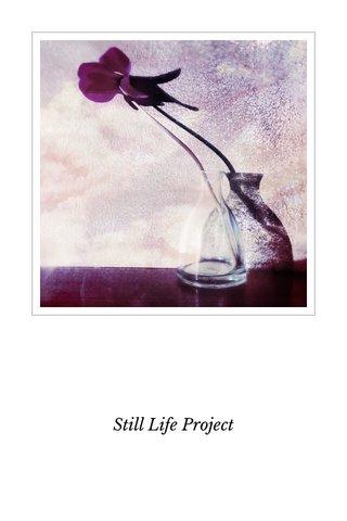 Still Life Project