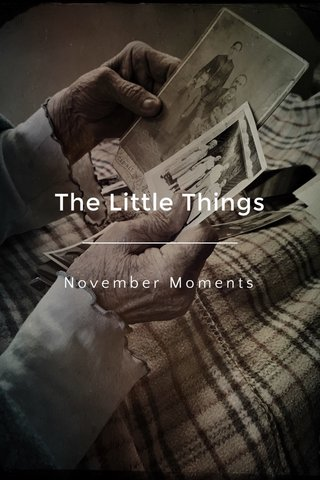The Little Things November Moments