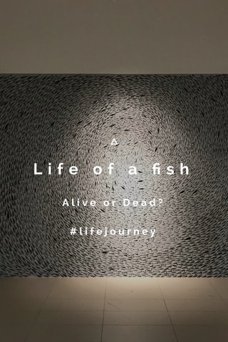 Life of a fish Alive or Dead? #lifejourney